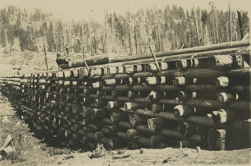 BOX 17-LOGGING-006.tif