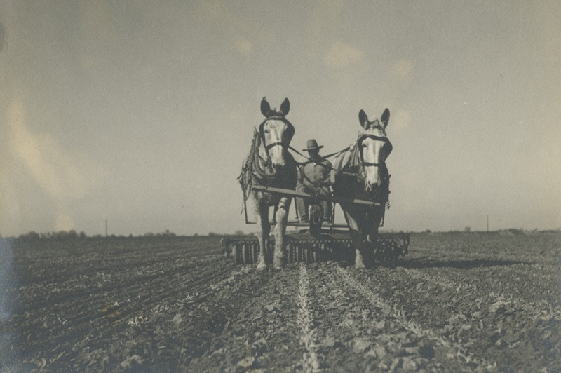 BOX 24 (RUTH-GOMEZ-COLLECTION)-AGRICULTURE-024.tif
