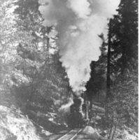 Hauling logs at Sugar Pine
