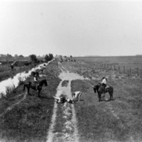 Lakeside ranch cowboys