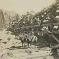 BOX 17-LOGGING-010.tif