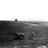 Lakeside Ranch field.