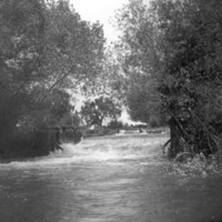 Tulare Canal