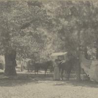 BOX 17-CAMPING-TOURS-018.tif