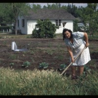 A Woman Working In a Camp Vegetable Garden