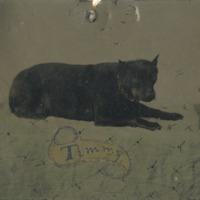 BOX 26-TINTYPES-041.tif